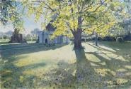 Early Spring Sunshine, Glastonbury Abbey